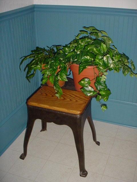 Machine base bench / plant stand Image